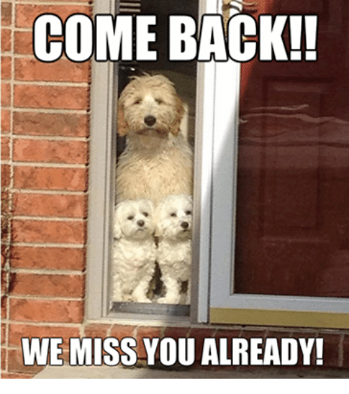 come-back-we-miss-you-already-5295459.png