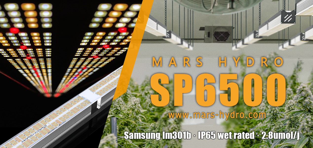 mars hydro grow journal contest 2021-sp 6500 led grow light.png