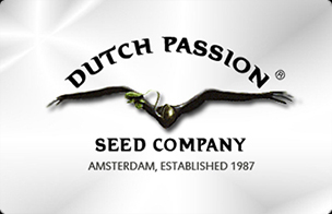 https://www.autoflower.net/wp-content/uploads/2017/03/dutch-passion-feminized-seeds-1461506616.jpeg