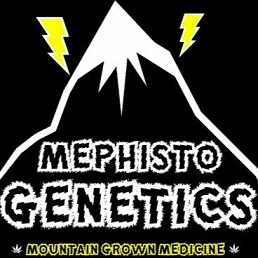 https://www.autoflower.net/wp-content/uploads/2017/03/mephisto.jpg